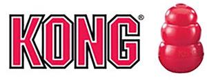Logotyp för KONG