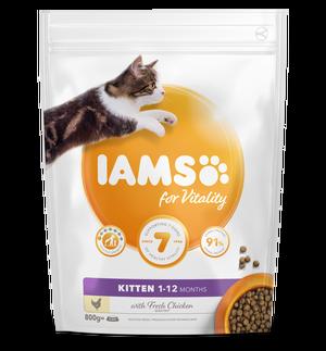 IAMS CAT KITTEN