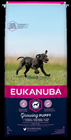 EUKANUBA GROWING PUPPY LARGE 15 KG