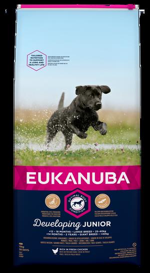 EUKANUBA DEVELOPING JUNIOR LARGE 15 KG